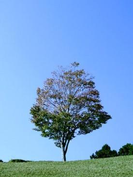 ブログ用写真4