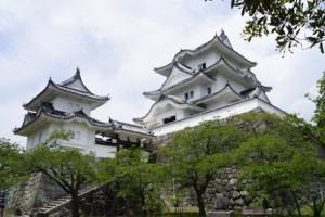 伊賀上野城 漆喰