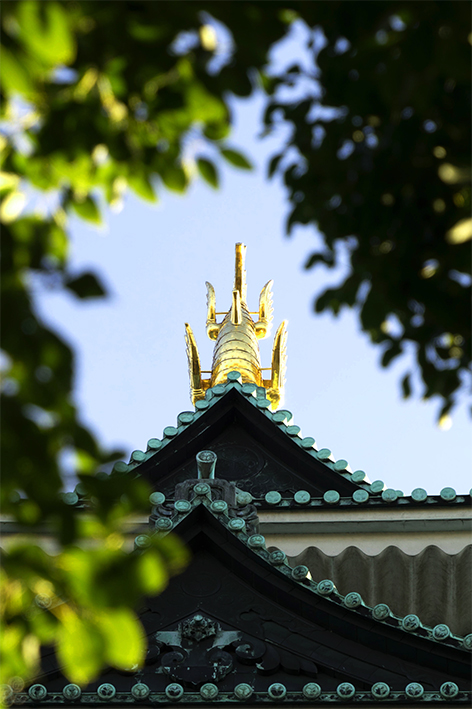 名古屋城 漆喰