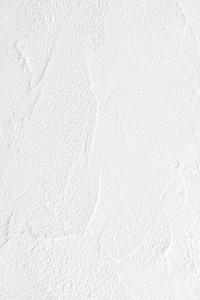 DSC07613[1] (854x1280)